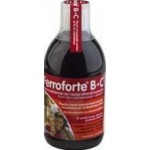 Ferroforte B+c Mikstuur 250ml