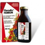 Floradix Ferrum ürdisiirup 500ml