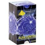 VITAMIINID AJULE ALFA-CORTEX N30